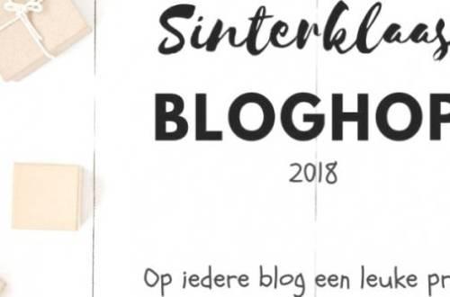 sinterklaasbloghop 2018 - De allerleukste (interactieve) poppen - Sinterklaas blog hop 2018