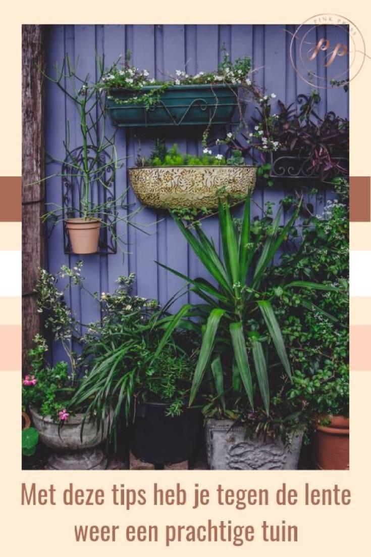 Met deze tips heb je tegen de lente weer een prachtige tuin - Met deze tips heb je tegen de lente weer een prachtige tuin