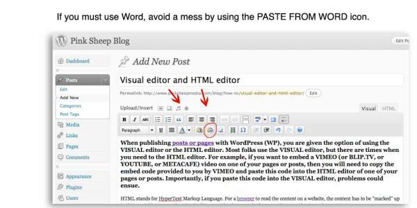 pasting text from word in WordPress