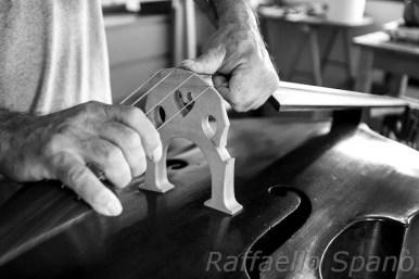 fotografando la musica by Raffaello Spanò