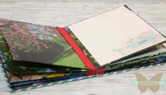 stampinup_video_minibook-upcycling_envelopes_perpetual-birthday-calendar_pinselschereco_alexandra-grape_002