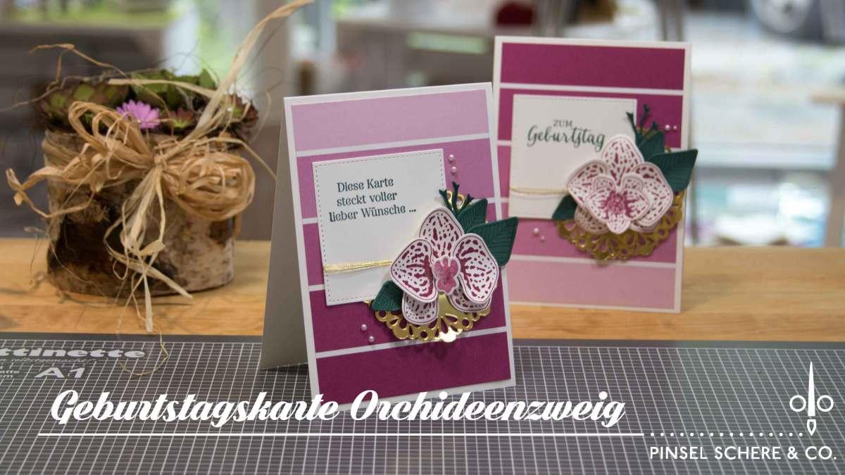 Orchideen zum Geburtstag