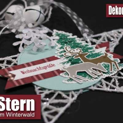 Weihnachtswild im Winterwald
