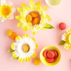 Cómo hacer Flores con Filtros de Café