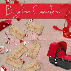 Moodboard Bugaboo Inspiración en Rojo