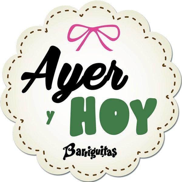 logo_ayeryhoy-barriguitas