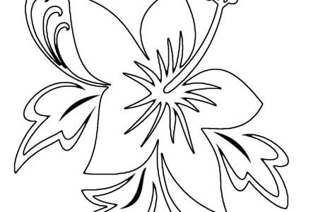 Best Dibujos A Lapiz De Flores Hawaianas Image Collection
