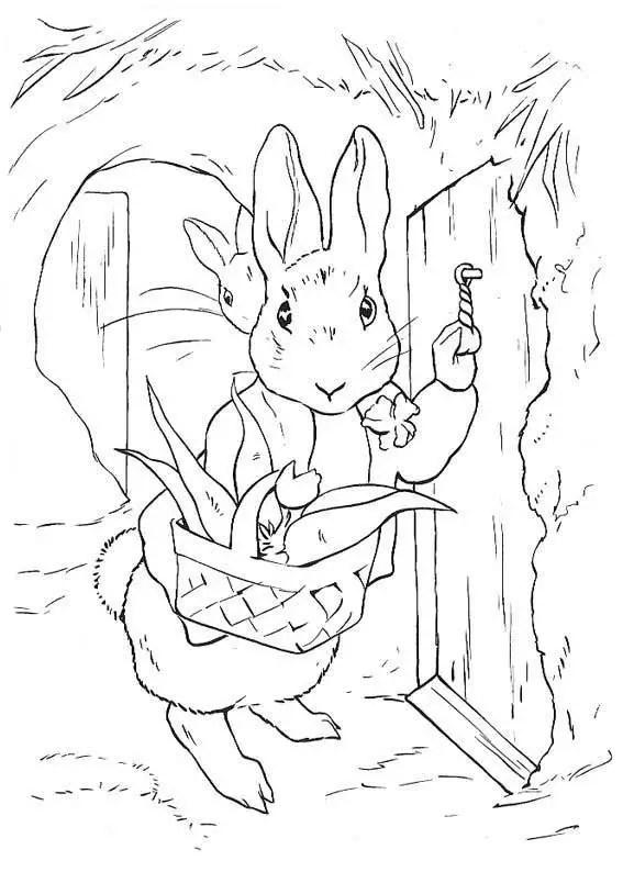 Dibujos De Peter Rabbit Para Colorear