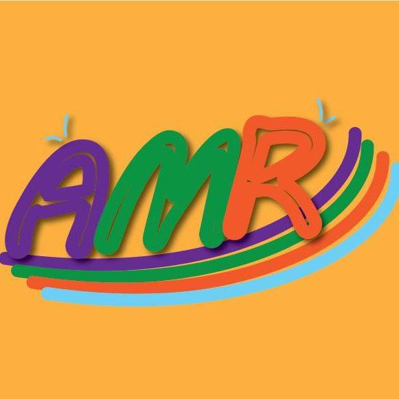 AMR MOHAMED AHMED MOHAMED