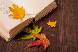 Zdjęcie otwartej książki z rozrzuconymi jesiennymi liśćmi
