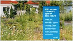 Z myślą o ekologii: w Poznaniu powstaną ogrody deszczowe