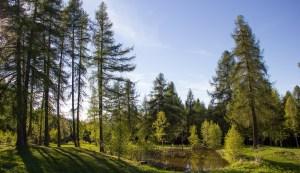 Pera-Schupf-Landschaft