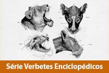 Catálogo da série Verbetes Enciclopédicos