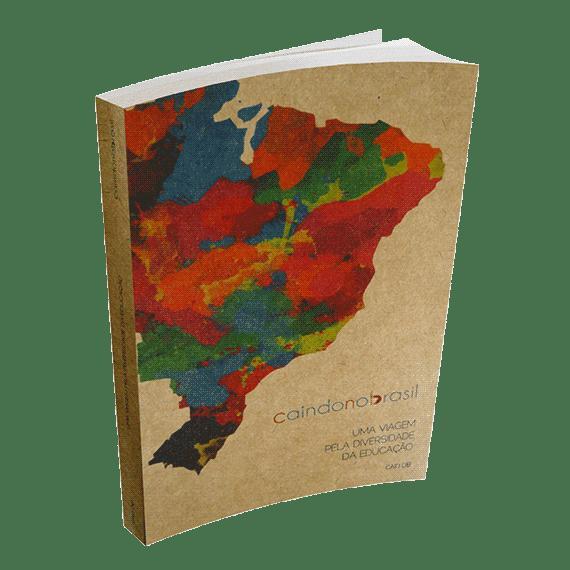 Caindo no Brasil: uma viagem pela diversidade da educação