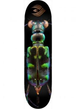 Powell Peralta Biss Tiger Beetle Flight Deck Team 8.25″