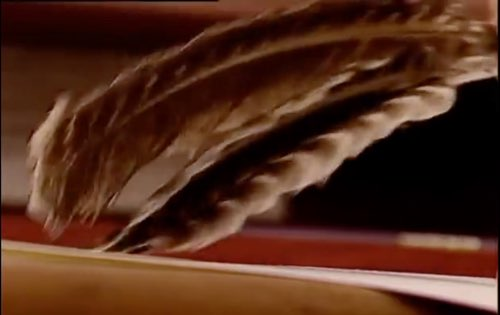 Francois Schuiten uses feathers to brush away the pencil/eraser shavings.