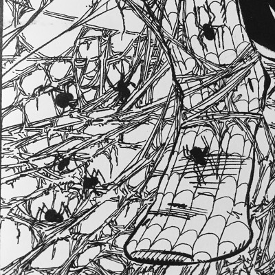 Todd McFarlane's adjectiveless Spider-Man #1 cover of spiders and webbing.