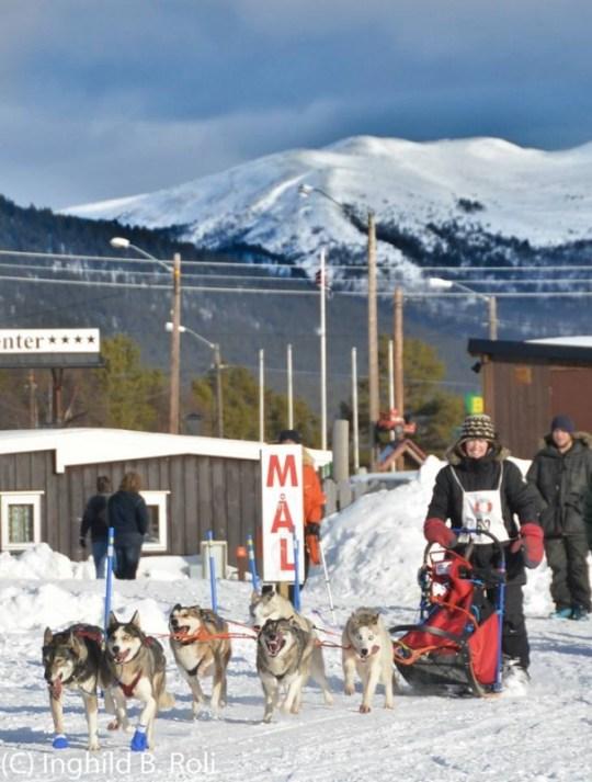 Rekuttløpet. Tur med startnummer for å gi unghundene en god opplevelse. Foto: Ingeborg B. Roli
