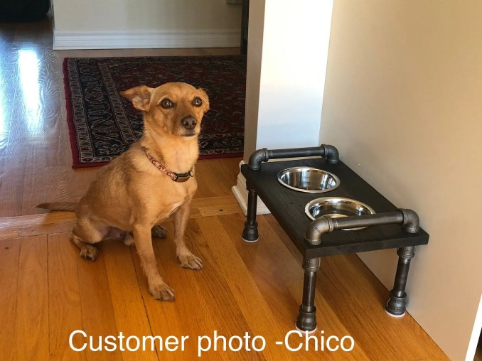 https://i1.wp.com/www.pipeworkpieces.com/wp-content/uploads/2020/10/industrial-style-small-raised-cat-or-dog-bowl-feeder-small-raised-feeder-dog-bowls-2-5f7b954b.jpg?w=678&ssl=1