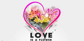 Love-is-a-flower-quote
