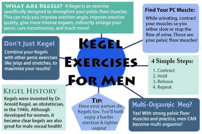 kegel exercises man. infographic
