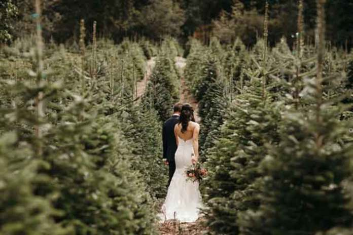 Christmas-wedding-photoshoot-Walking-in-the-Forest