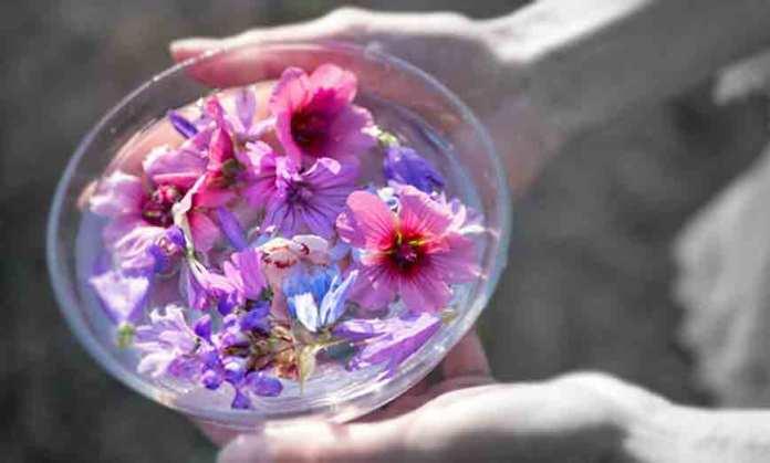 First steps creating flower essence