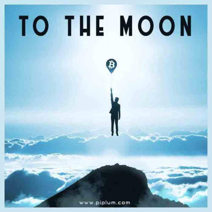 Bitcoin-to-the-moon-Funny-crypto-phrase