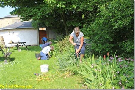 gardening_one
