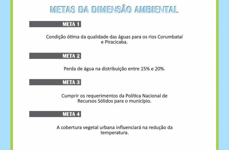 DIMENSÃO AMBIENTAL E SUAS METAS