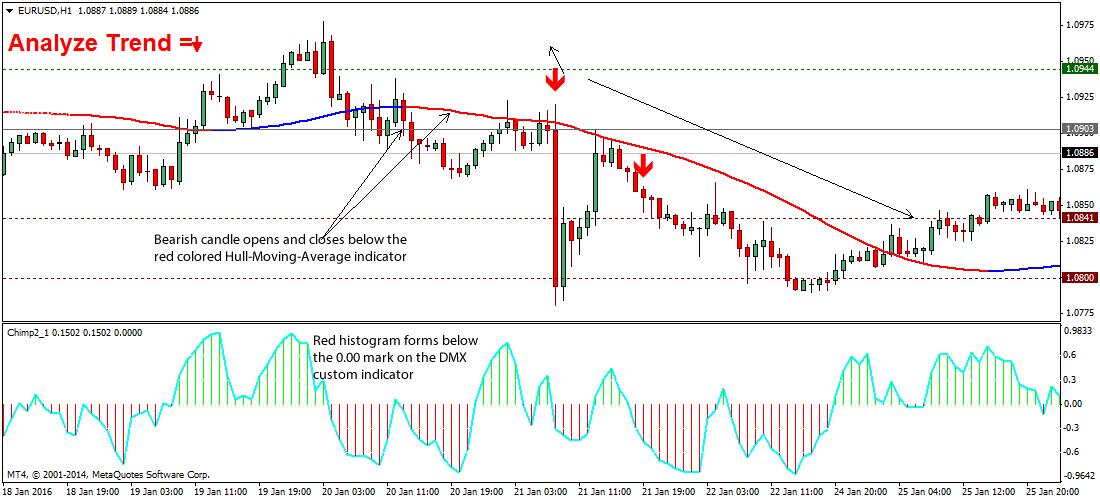 piranha-forex-tradingstrategy2