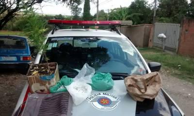 Denúncia levou policiais a casa onde droga e suspeitos estavam - Foto: Divulgação