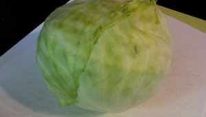 A small head of cabbage for small batch kraut