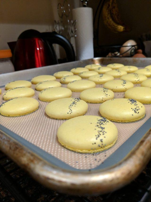 Baked Lemon Poppy Seed Macaron