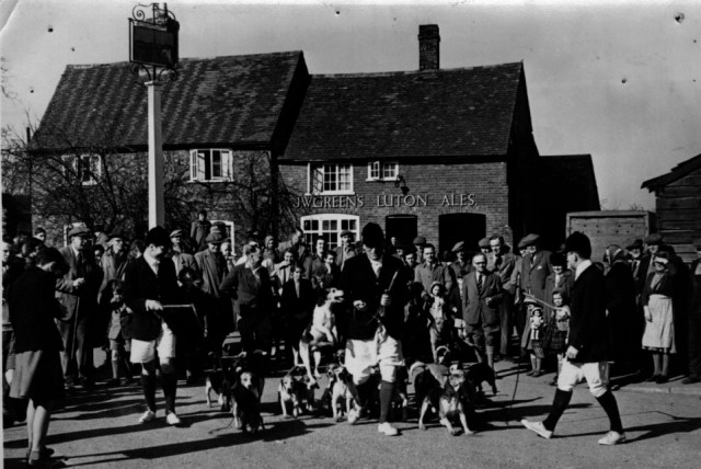The beagle hunt meeting in 1954