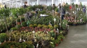 Targi ogrodnicze Gardenia 2019