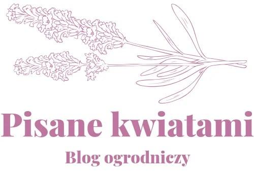 Pisane kwiatami – piękne ogrody i praktyczne ogrodnictwo