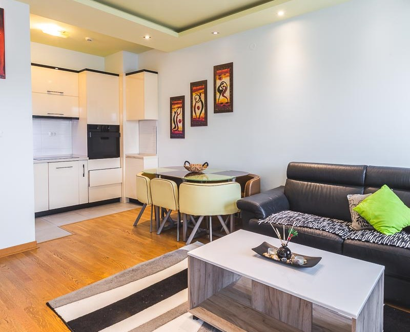 Moderan i dobro održavan stan se izdaje na duži period-10