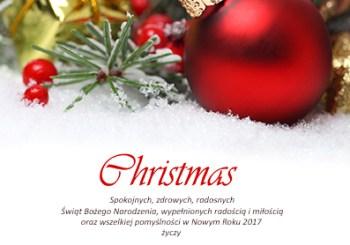 Wesołych Świąt, kochani ;)