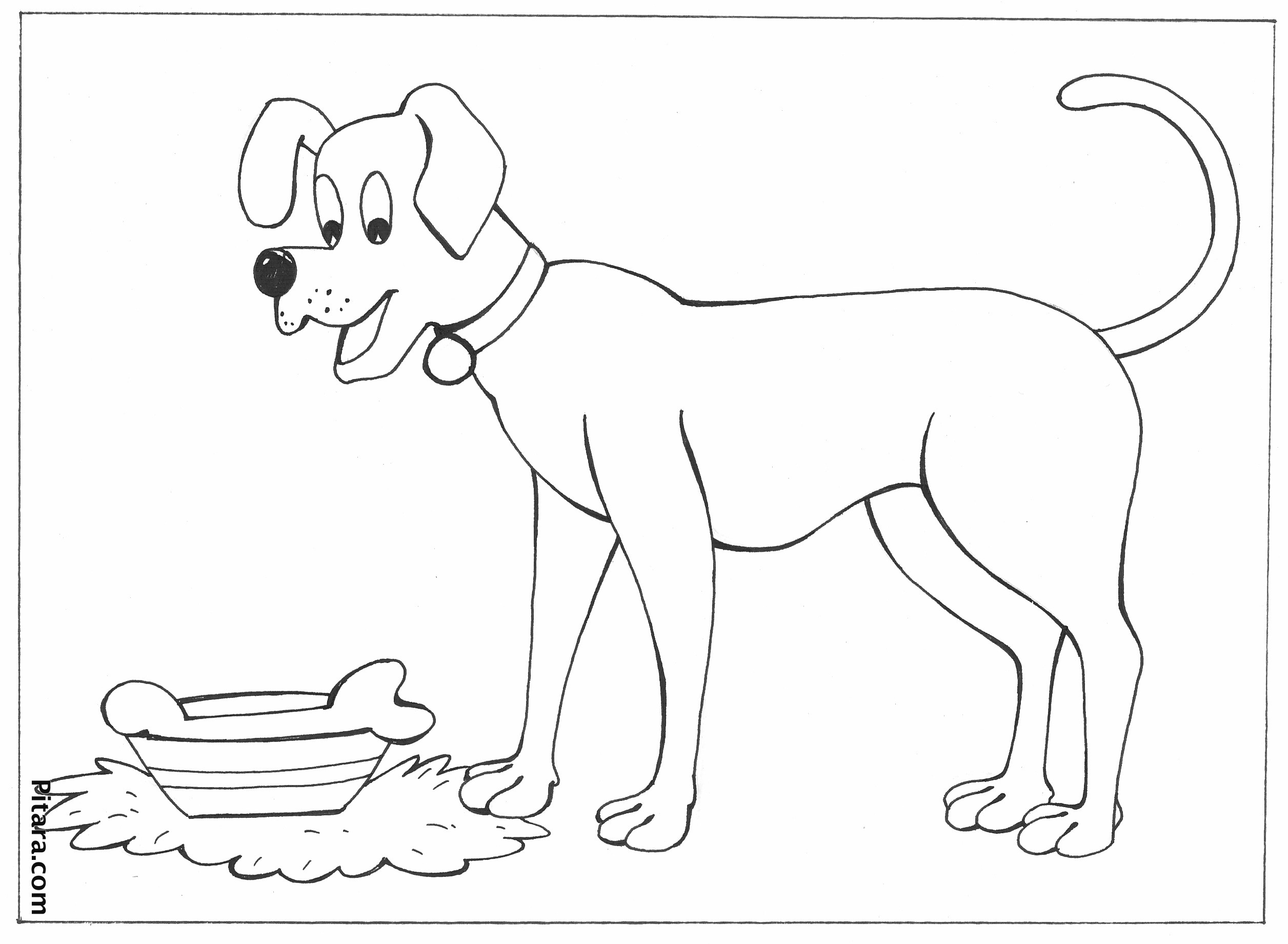 Domestic Animals Coloring Pages | Pitara Kids Network | animal coloring pages for toddlers