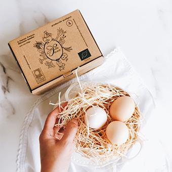 presentacion huevos pitasana