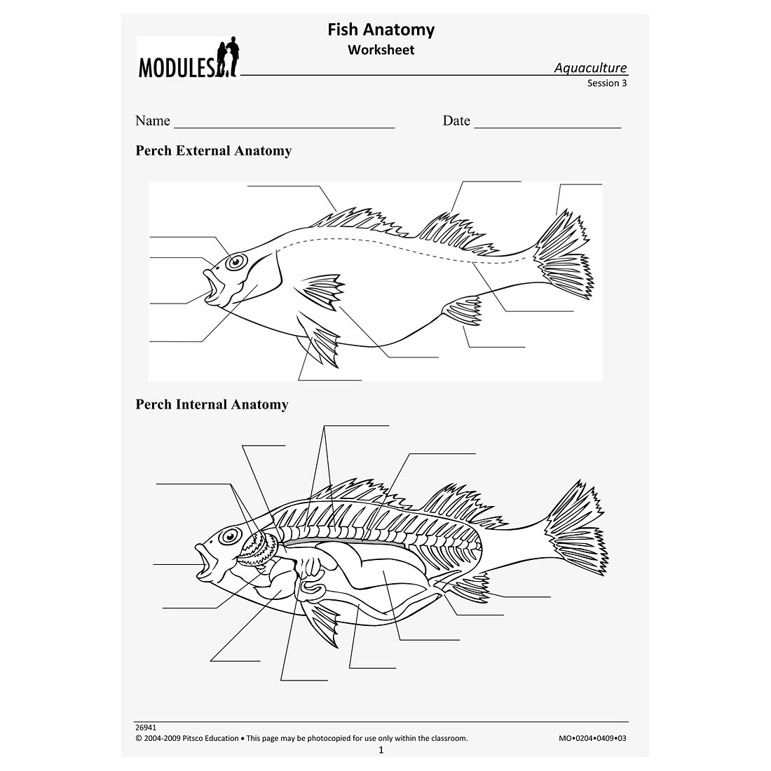 Parts Of A Fish Worksheet