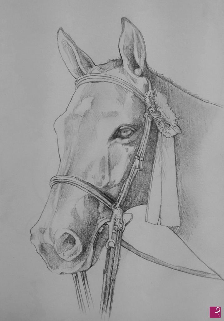 Sconsiglierei i colori troppo lucidi, danno una. Collezione Privata Quadro Ritratto Di Un Cavallo Natalia Khromykh Pitturiamo