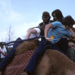 Kohoutek 1975 - Camel rides
