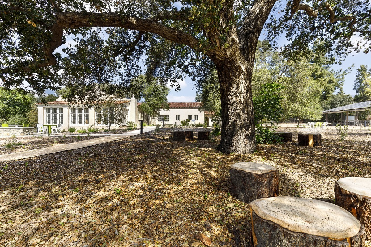 Wide angle view of oak talking circle northeast of the Conservancy building