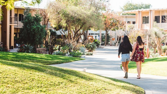 two students walking away from the camera on the sidewalk
