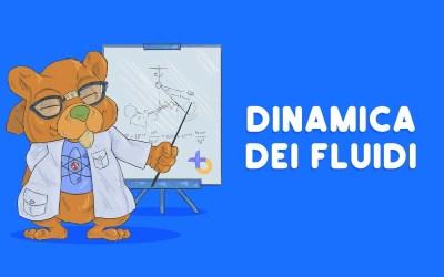 La dinamica dei fluidi