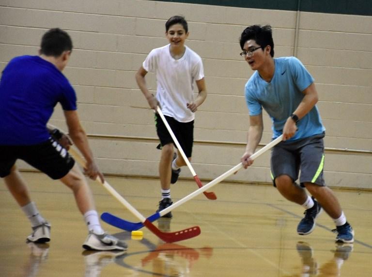 floor hockey physical education health