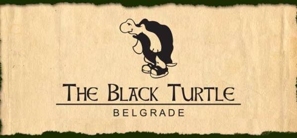 THE BLACK TURTLE