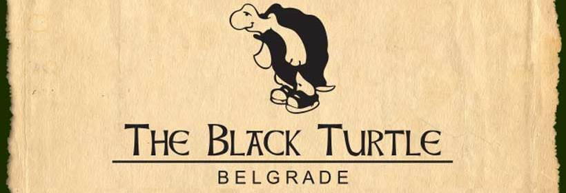 THE BLACK TURTLE